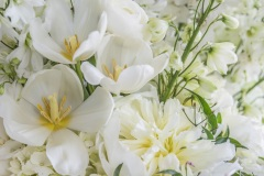 flourishingart-sanghera_63_42686472880_o