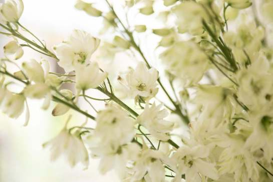 FlourishingArt-Sanghera_86